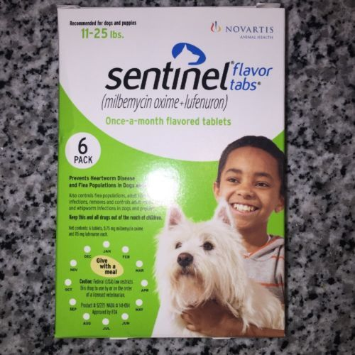 Prevention For Dogs (11-25lbs) 6 Month Supply BRAND NEW https://t.co/v5QYxyKxyU https://t.co/SQ7qnpHp5K