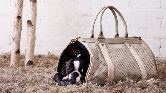 Canvas Pet Carrier by BK Atelier