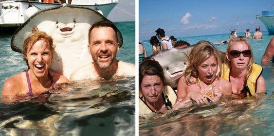 16 φωτογραφίες που είναι απίστευτα αστείες σε σχέση με τις πρωτότυπες