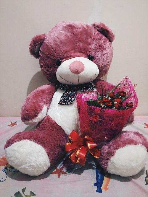 صور دبدوب عيد الحب 5 Teddy Bear Teddy Bear