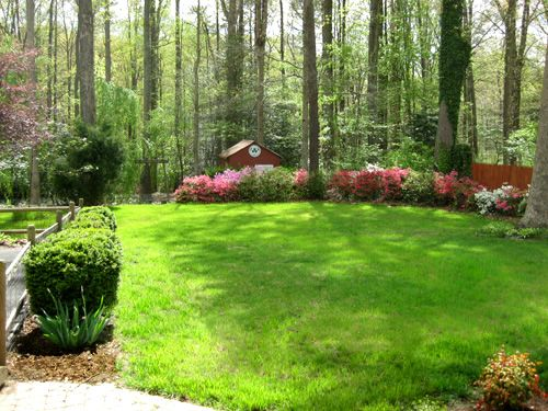 Large Backyard Landscape Ideas erikhanseninfo
