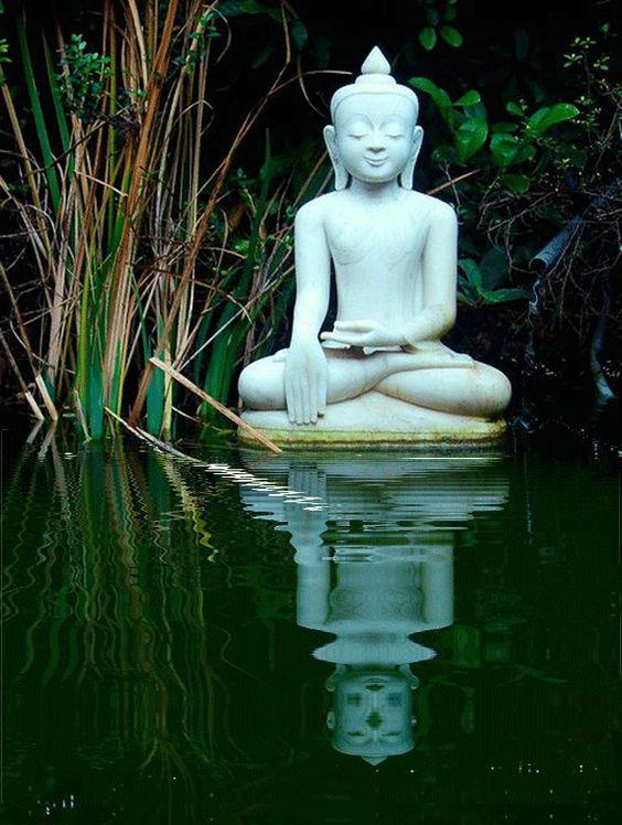 Statuette de Bouddha. GIF animé.