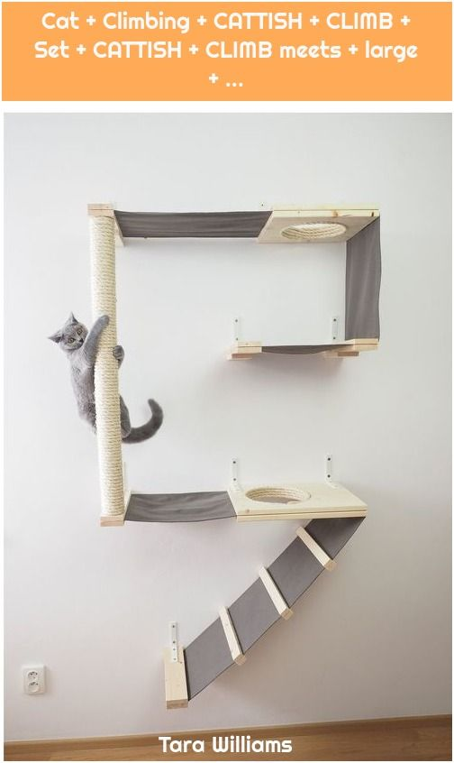 1 Cat Climbing Cattish Climb Set Cattish Climb Meets Large Katze Cat Cattish Climb Climbing La Cat Playground Diy Dog Stuff Cat Diy