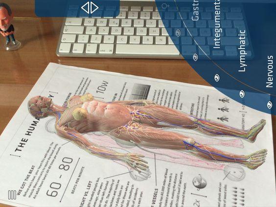 Cuerpo humano con RA. App Anatomy 4D