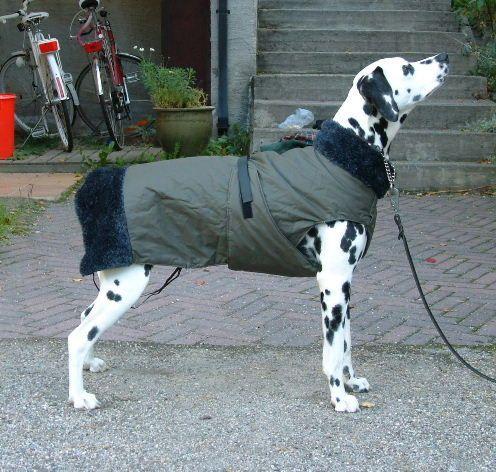 Dog warm winter coat tutorial and pattern @Noelia Mendoza Medina Félix Paniagua ompelukerho