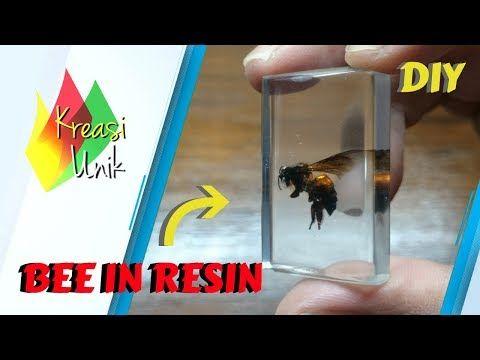 Kerajinan Resin Lebah Didalam Resin Bee Resin Art Diy Kreasi