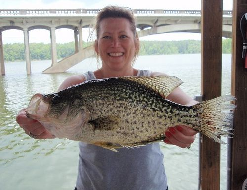 Big crappie pictures google search fishbox girls for Best crappie fishing times