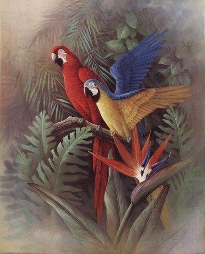 Exotic Birds Art Print by T.C. Chiu
