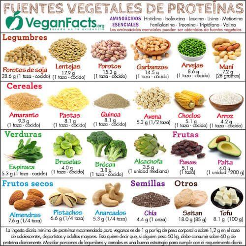 Quiero ser vegetariana para adelgazar