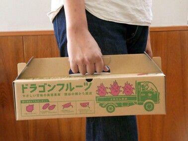 Packaging for dragonfruit by idea NINBEN