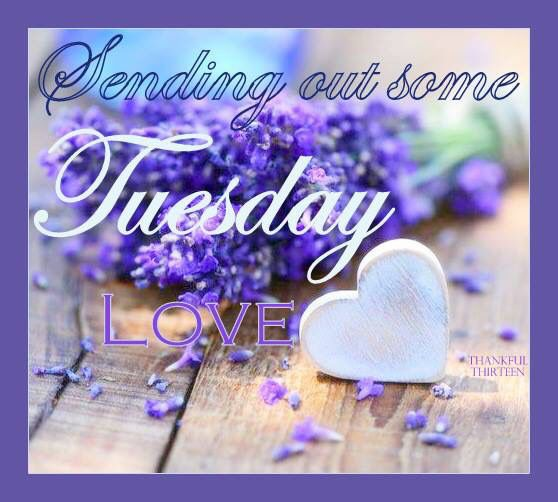 Sending Out Some Tuesday Love Image good morning tuesday tuesday quotes good…