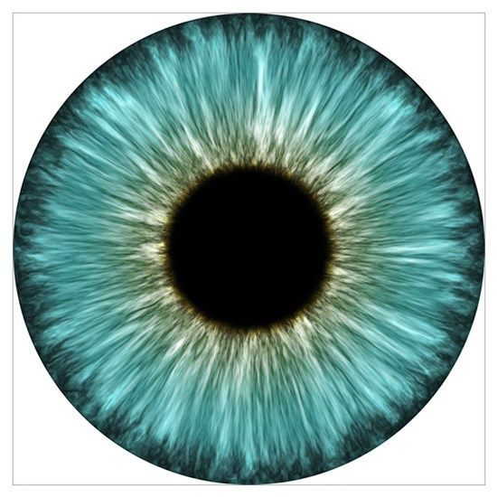 Weird Eye By Nucular Cafepress Eye Texture Eye Drawing Iris Art