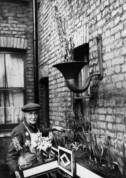 80 year old Mr Webb of Sansom Street Camberwell has entered 10 gardening competitions in London and won eight of them even though his garden consists of an old loudspeaker and window boxes, 23rd March 1939.