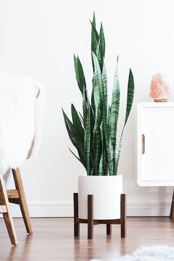Au milieu du siècle moderne plante Stand avec pieds carrés | Etsy