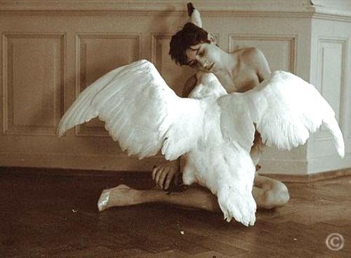 luciano & the swan [self portrait] - luciano castelli, 1976