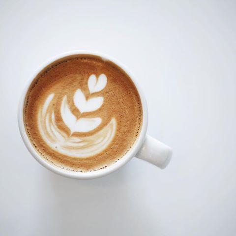 Drink Me Latte Sonder Coffee Tea Denver Co Latte Coffee Tea Drinks