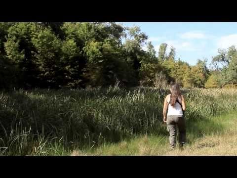 El Último Cazador - Entera Castellano - YouTube