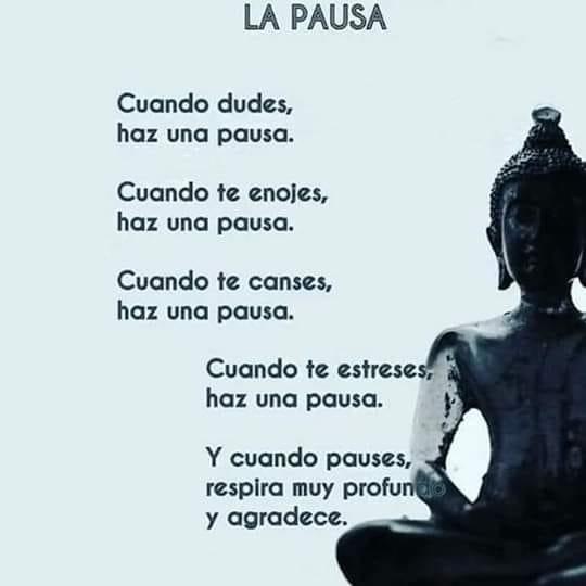 Respirar Profundamente Frases Budistas Frases Bonitas De