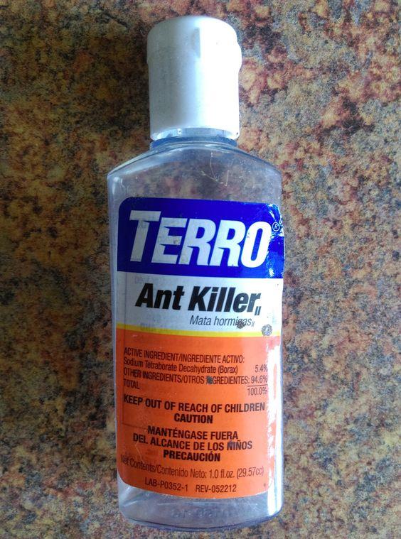 Kristen Getting Crafty!: Terro Ant Killer vs. Raid Ant Gel, Terro wins!!