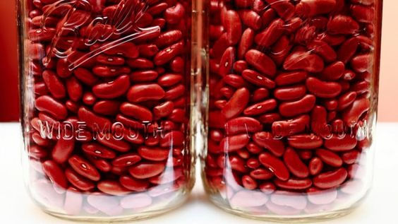 Which Type of Protein is Better for Our Kidneys?