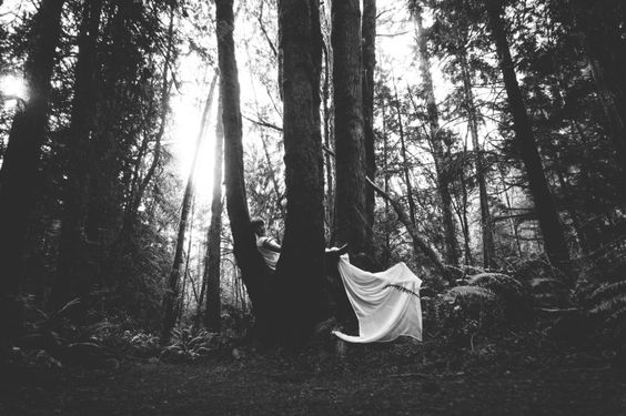 Forest Portraits | Alec Mills Photography Northwest Natural Light Photographer & 30 Minutes in the Life: Blog Circle March 2015 | Naturale Foreste ... azcodes.com