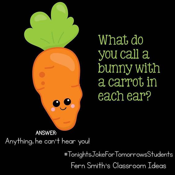 What do you call a bunny with a carrot in each ear?