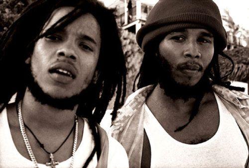 Ziggy Marley and Stephen Marley