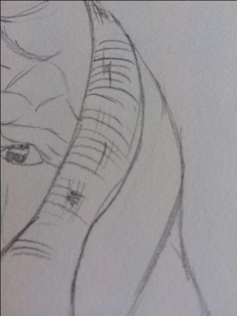 In mijn schets heb ik geprobeerd de doek die de vrouw om zich heen heeft nog ouder en kapotter te laten lijken. Dit heb ik gedaan door versleten plekken te tekenen met lijntjes en ik het gaten gemaakt in de doek.