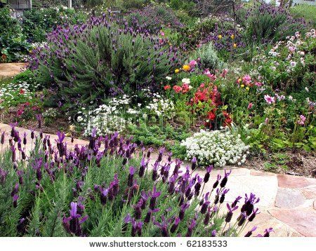 Complete with cottage garden  Google Image Result for http://image.shutterstock.com/display_pic_with_logo/262609/262609,1286027142,3/stock-photo-cottage-garden-62183533.jpg