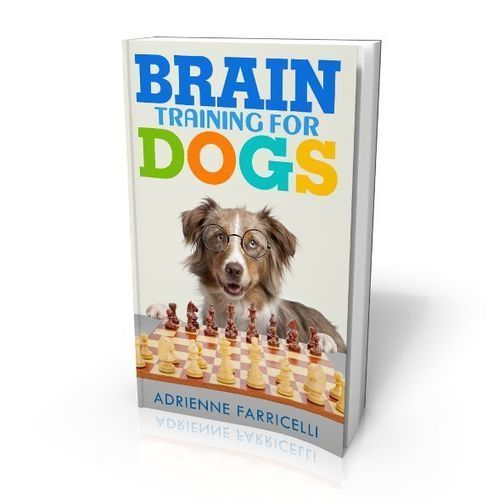 Brain Training For Dogs Adrienne Farricelli Pdf Download Dog