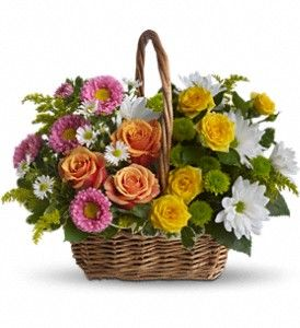 #Sweet_Tranquility_Basket : A basket full of bright blossoms will deliver the warmth of sunshine even when the skies seem gray. For more visit @ http://www.aceflowershouston.com/houston-flowers/sweet-tranquility-basket-372999p.asp: