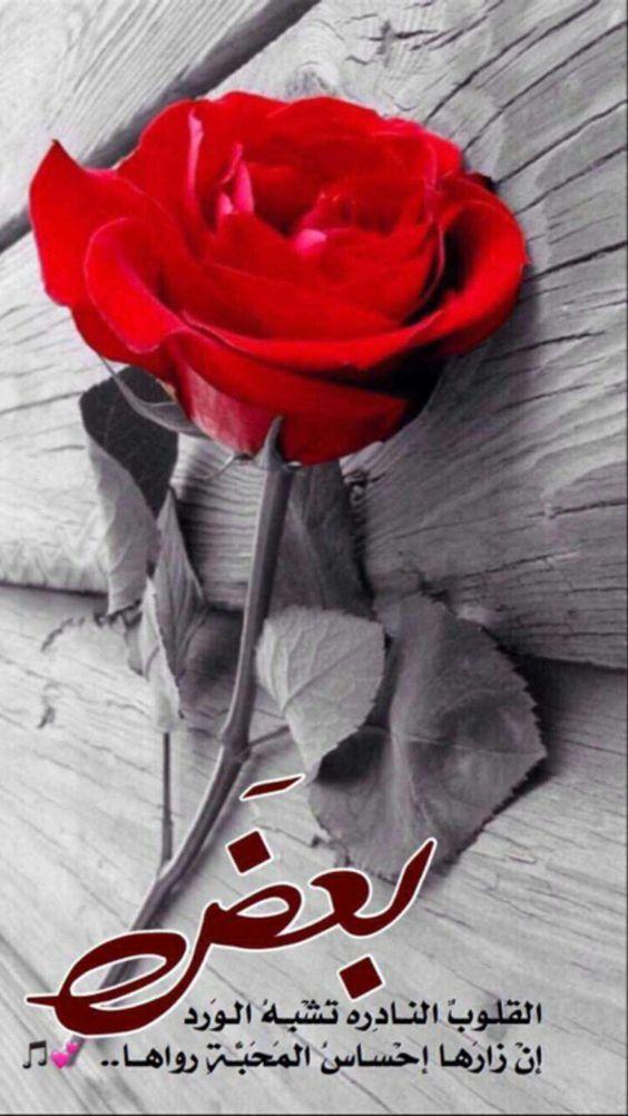 بعض القلوب النادرة تشبه الورد ان زارها احساس المحبة رواها Flower Quotes Beautiful Morning Messages Islamic Quotes Wallpaper