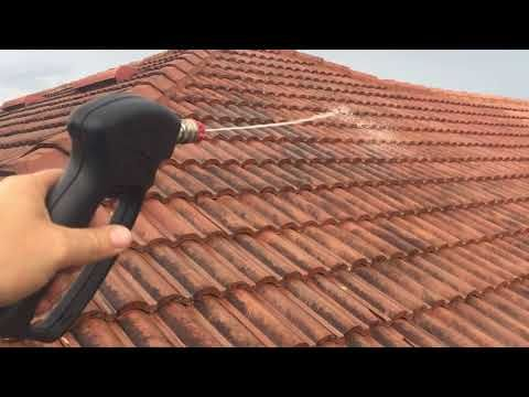 sodium hypochlorite roof cleaning