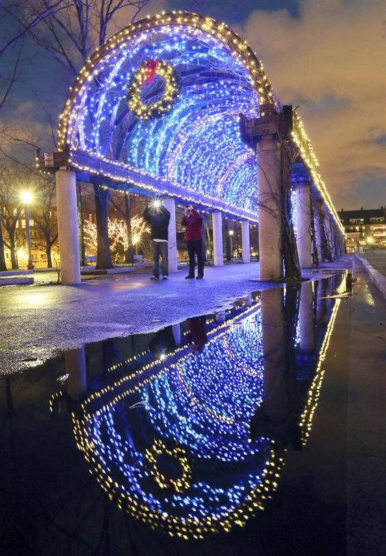 Christopher columbus boston and holiday lights on pinterest for Sidewalk christmas lights