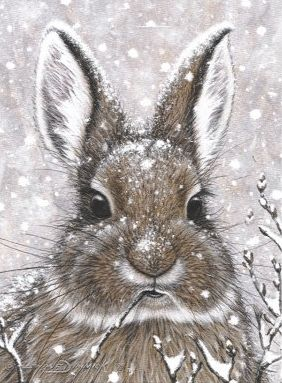 ❧ Illustrations Petits lapins ❧ by Marjolein Bastin