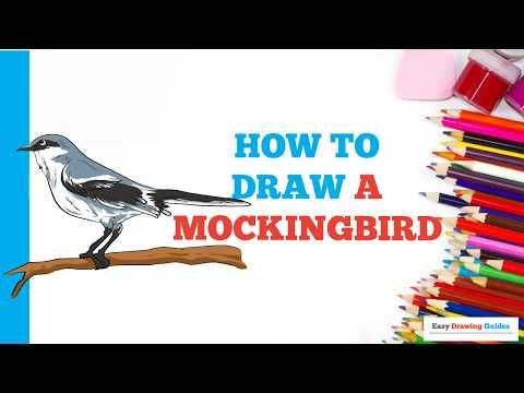 Easy Drawing Guides Youtube Drawing Tutorials For Kids Easy Drawings Drawing Tutorial