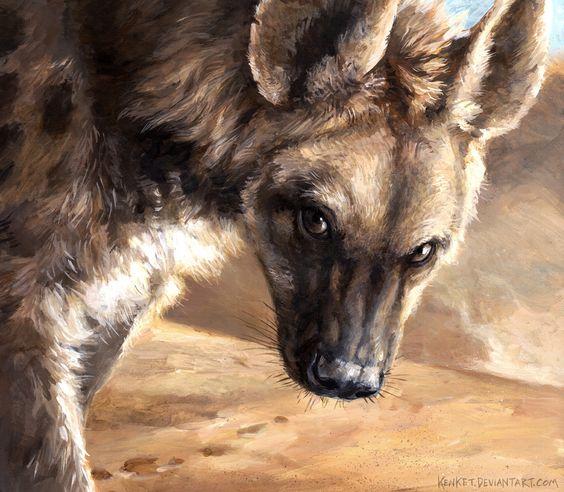Image représentant une hyène