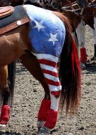 Costumes for Horses for Horse Shows, Halloween or Parades...going to try this...