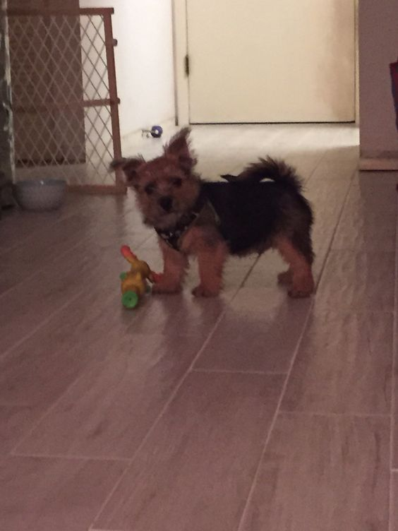 Teddy's growing up!