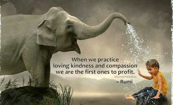 Quotes About Kindness And Compassion. QuotesGram: