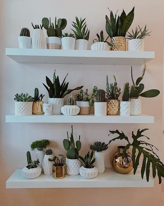 Find Out 15 Proper Ideas To Decorate Bedroom Plants Decor In 2019 Wall Decor Living Room Bedroom Plants Plant Decor