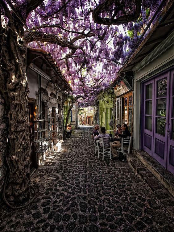 レスヴォス島/ギリシャ