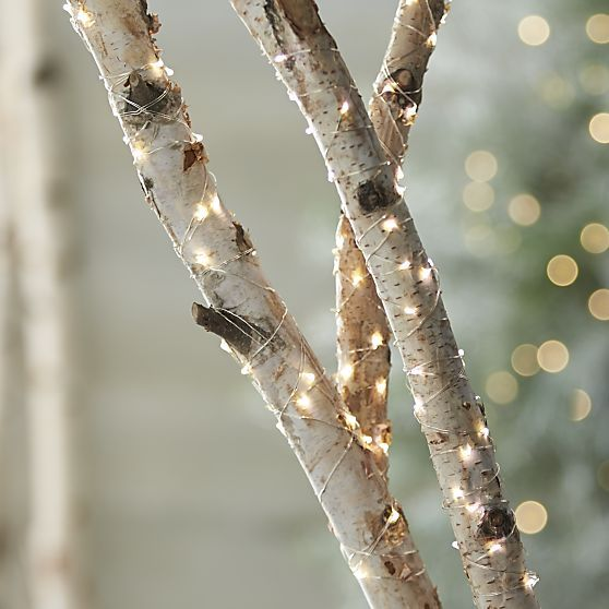 Twinkle String Lights in Christmas Decorating | Crate and Barrel, could have birch branches wrapped in lights in a pot: