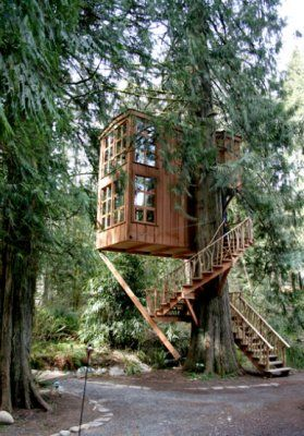 Famous Tree Houses trees, stairs and blog on pinterest