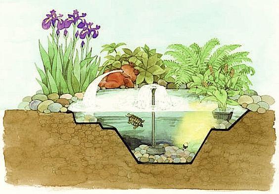 Le mouvement provenant d'une pompe de circulation et d'une fontaine suffit à oxygéner ce petit bassin en polyéthylène de 500 litres. La filtration est obtenue par des pierres de lave, servant de support à des bactéries purifiantes, et des plantes de rive. © Oase Water Gardens