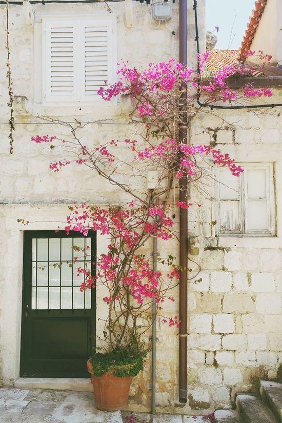 * magnoliaelectric.net travelguide, traveling, croatia, dubrovnik, game of thrones tour, reisetipps