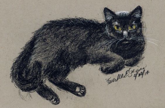 The Creative Cat - Daily Sketch: Sunshine Reclining