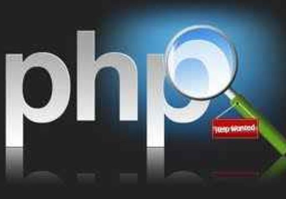 Bingo! provide you with 40 high quality php scripts on fiverr.com