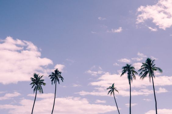 Urban Outfitters - Blog - Photo Diary: Fiji Dreams