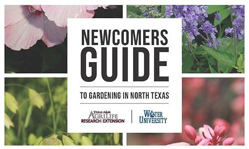 091047c0b1a7959231f5721a8884e84d - Newcomers Guide To Gardening In North Texas
